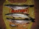 Рыбацкая осень